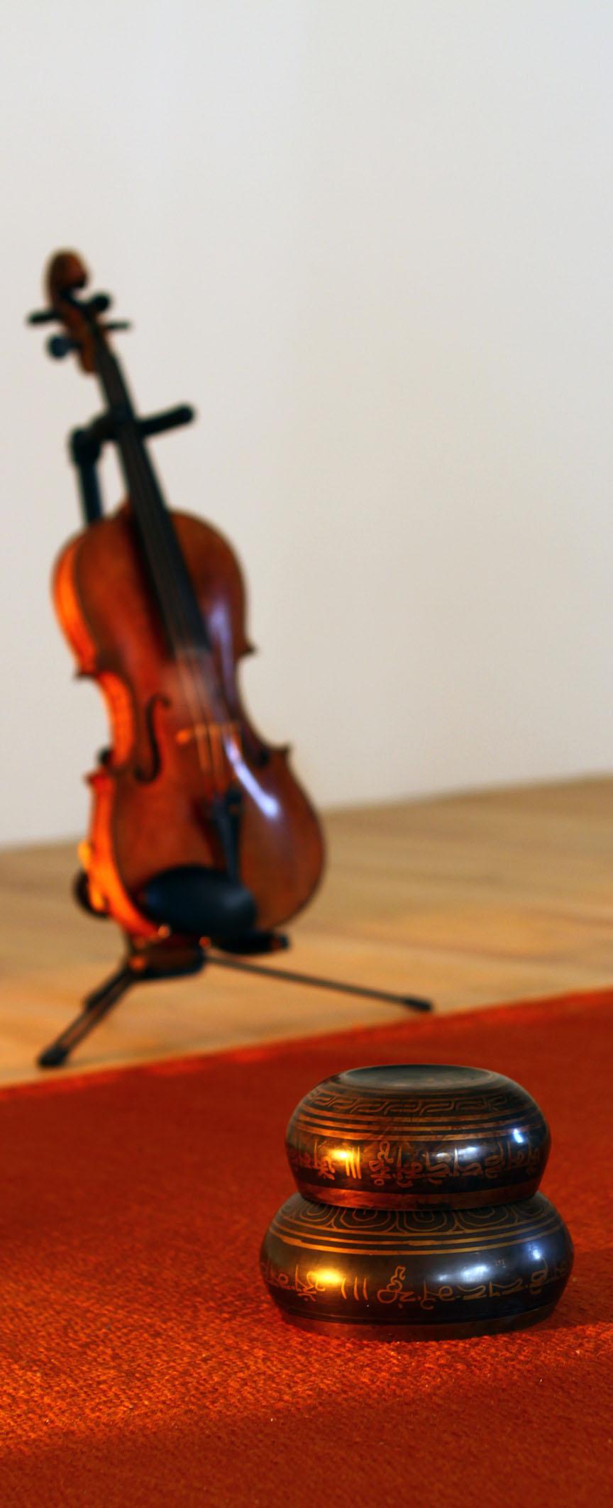 PO violon bols